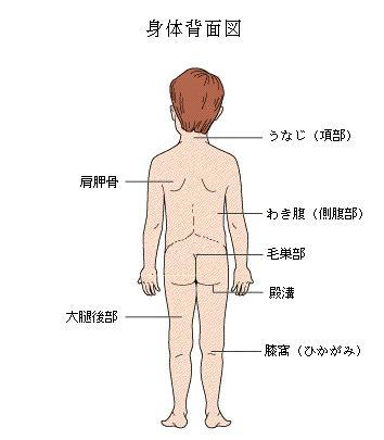 痛み 背中 側 右 脇腹
